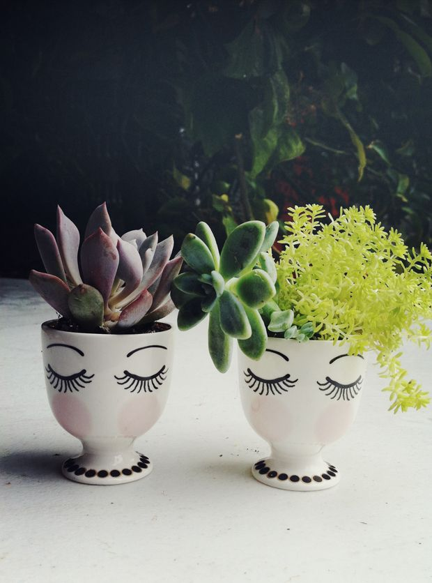 DIY-gift-sharpie-plant-holder