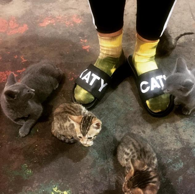 Katy-Cats-sandals